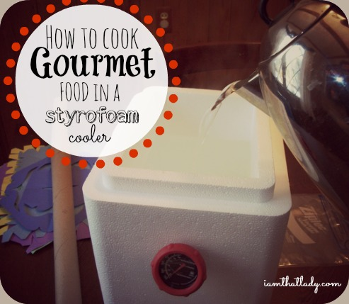 Are you looking for an inexpensive way to cook gourmet food? Check out my homemade sous vide cooker made out of a styrofoam cooler I got for free in the mail!