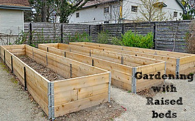 Raised Bed Ideas Gardening with Raised beds Simple tips