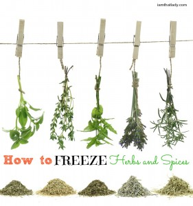 how to freeze herbs and spices