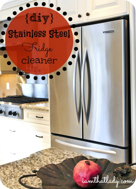 Homemade stainless steel cleaner - VERY