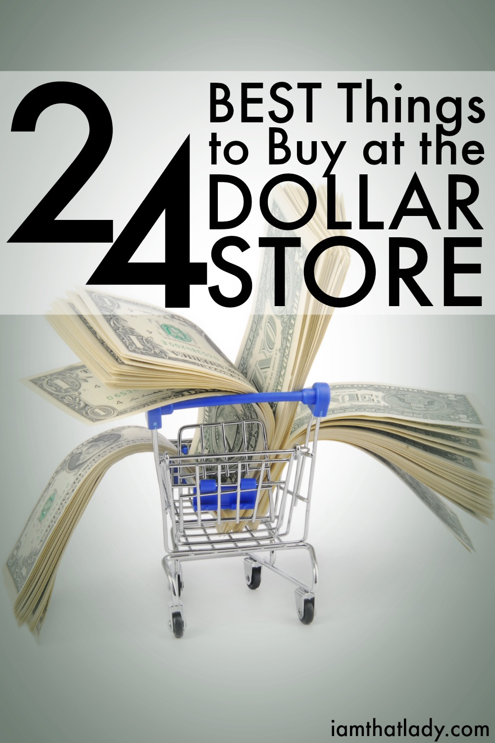 Not everything at the dollar store is a great deal, but many things are. Check out this list of 24 AWESOME buys at the dollar store!