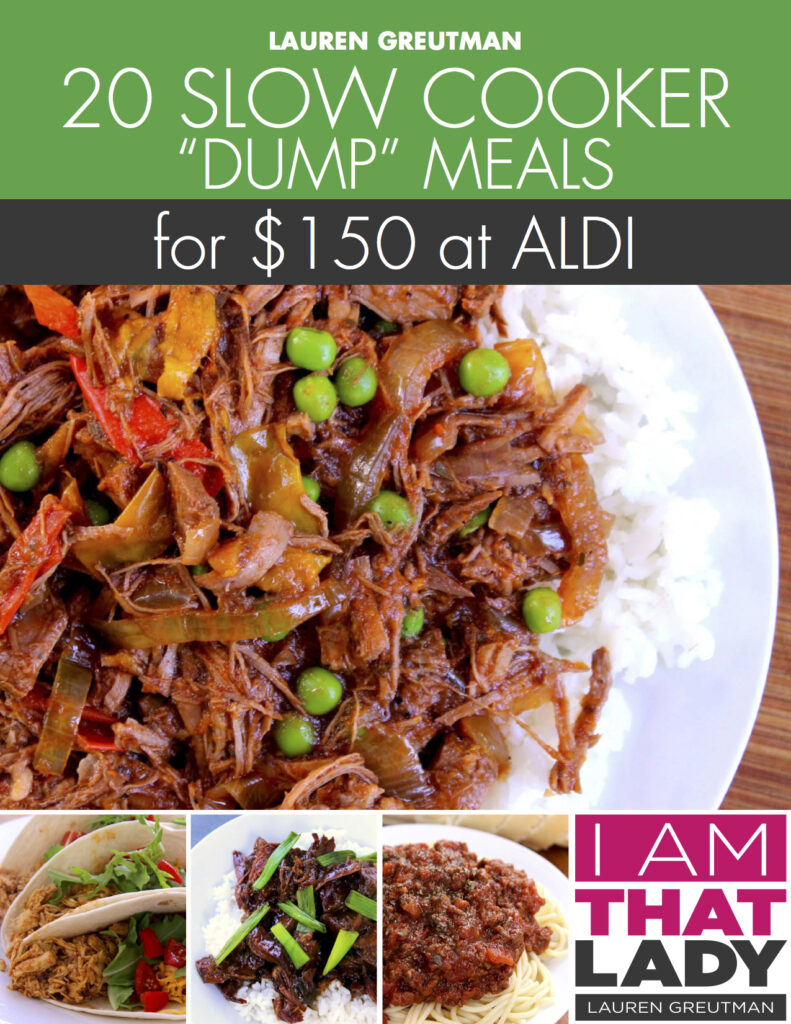 ALDI Slow cooker Dump Plan cover