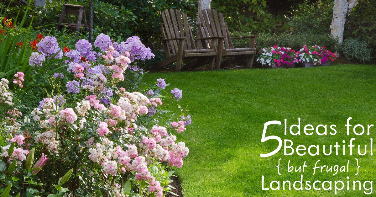 Looking for Head-Turning Landscaping for your Home on a Budget? Then chock out these 5 Ideas that will take your Home's curb appeal to the next level!